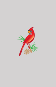 Go to record The National Audubon Society field guide to North American...